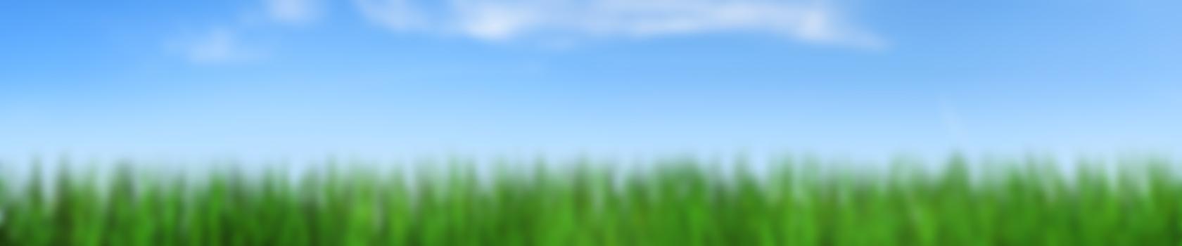 grass_2